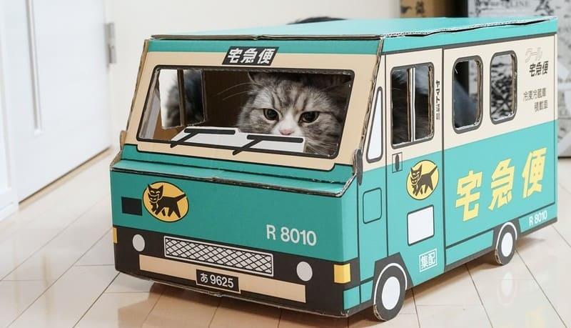 クロネコヤマトの車をイメージした箱に乗っている猫
