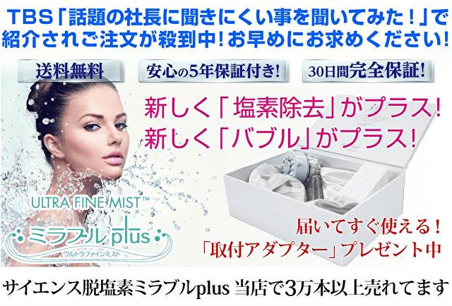 GWFの販売ページ画面ショット