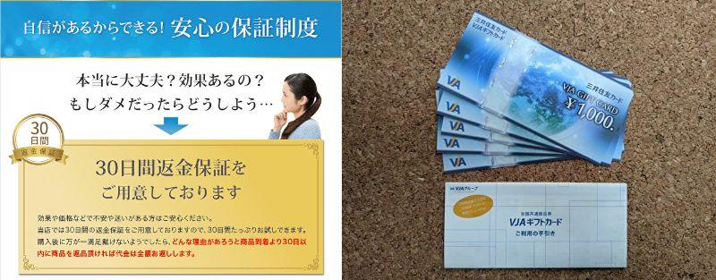 30日間返金保証の説明画面ショットと5千円のVISAギフト